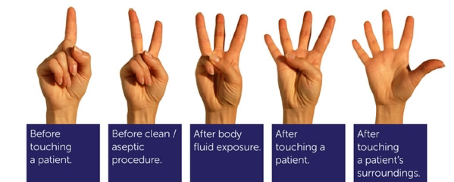 5 steps for hand hygiene